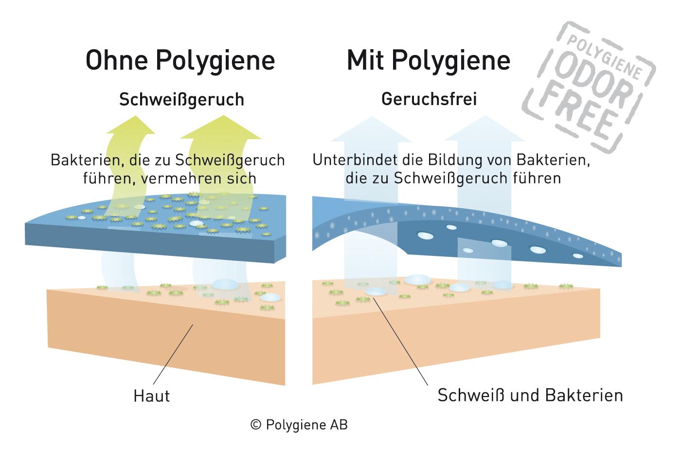 Funktionsweise-Polygiene